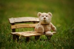 Grace After Fifty bear on bench Pixabay