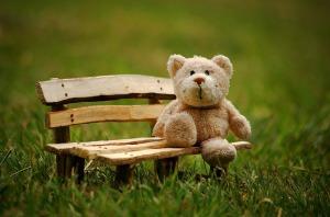 Grace After Fifty bear on bench Pixabay